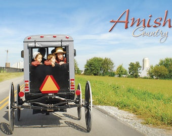 PA Amish Country Amish Children Riding in a Buggy Postcard