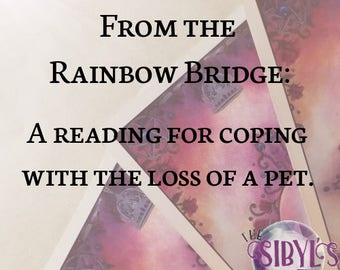 Tarot Reading: From the Rainbow Bridge