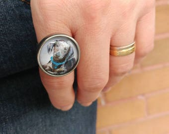 Pewter Ring, Dachshund Ring, Hypoallergenic Ring, Dachshund, Tin Cast in Quebec, Dog, Dachshund Dog, Adjustable Ring