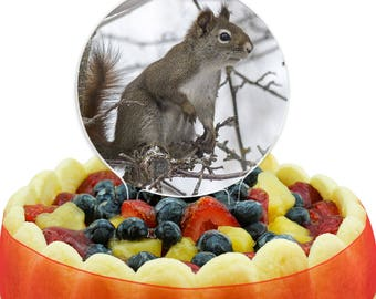 Winter Forest Tree Squirrel Cake Top Topper