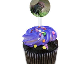 Otter Face Whiskers Cake Cupcake Toppers Picks Set
