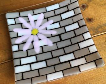 Daisy on a brick wall platter