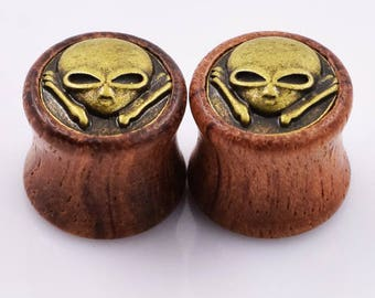 Pair of alien wooden plugs
