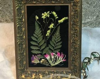 Pressed Flower Framed Art Treasure