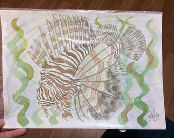 SALE!! Tiger striped lion fish