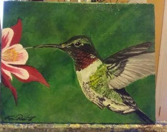 Humming birds delight