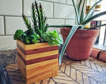 Indoor Mini Planter Garden