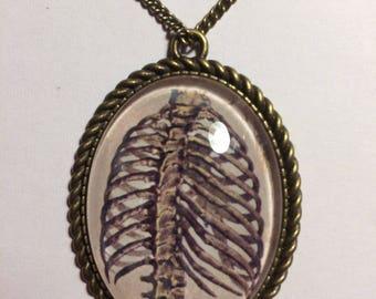 Human Anatomy Large Pendant Necklace