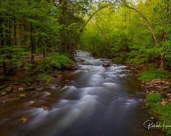 Great Smoky Mountain National Park Stream