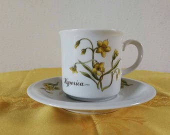 Cup and Saucer Winterling Bavaria