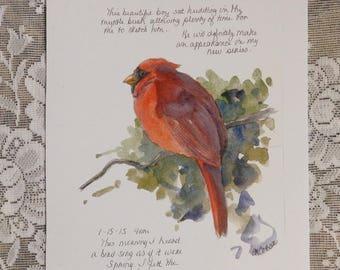 Cardinal bird etsy sciox Image collections