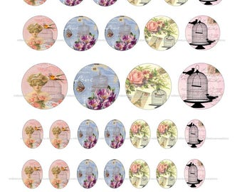 Series 218 - 40 Images Digital Vintage cage bird creations cabochons - sending by e-mail