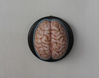 Human Brain Silicone Wall Decor Display