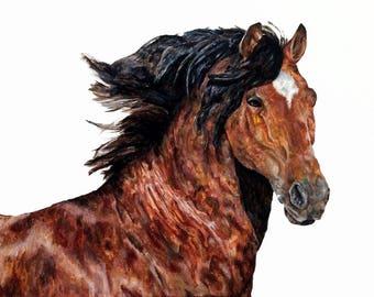 Horse Portrait - 10x8 Framed Print