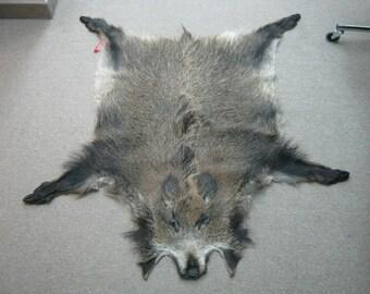 Wild Boar Skin: Medium (577-M-G1326)