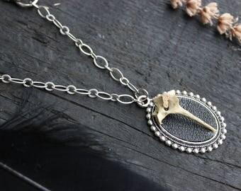Wild Rabbit Medallion / Real Animal Bone / Handmade / Dark/ Unique / Leather/ Boho Necklace / Black Jewelry / Statement necklace/ bone