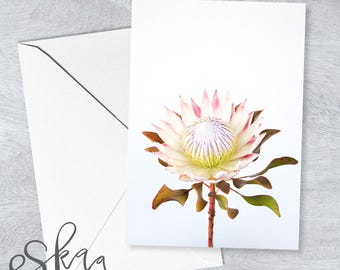 Protea card, blank card, anniversary card, last minute card, printable card, wedding card, card for girlfriend, card for wife, protea, blush