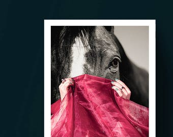 Intuition - Horse Surreal Abstract Collage Art Print, Artwork, Wall Art, Giclee Print
