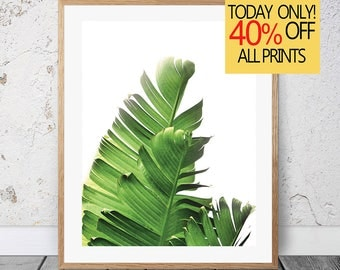 Banana Leaf Print, Banana Leaves Art, Tropical Wall Art, Tropical Plant, Printable Art, Leaf Print, Botanical Leaf Art, Palm Leaf Print