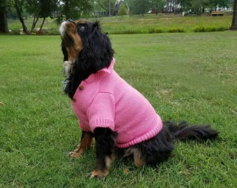 Doggone cute sweater