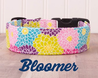 """Floral Teal, Green, Pink, and Purple Dog Collar """"Bloomer"""""""