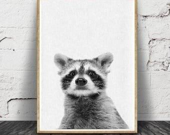 Raton laveur Print, bébé, Animal, animaux de la forêt Wall Art, décor de chambre d'enfant, Baby Shower, téléchargement numérique,