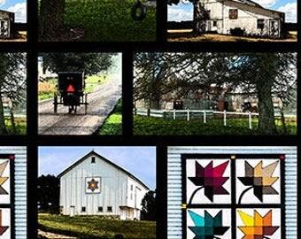 "Barns of LaGrange County Indiana   ---- panel (23"" wide)"