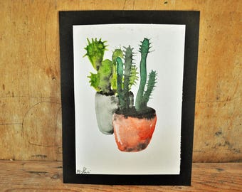 Water potted red and Black Cactus