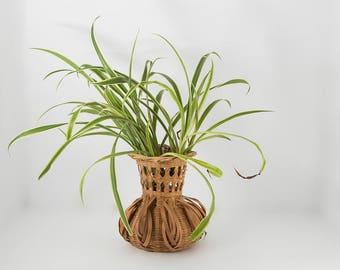 Small basket vase, weave, rattan, wicker, urn, boho decor,