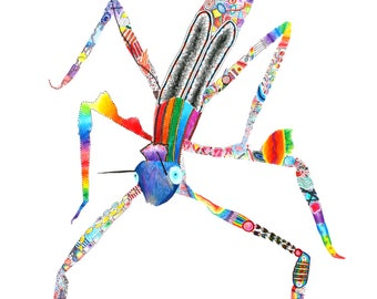 Rainbow Stick Insect