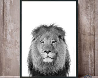 Lion Print, Lion Black and White, Safari Prints, Kids Wall Art, Animal Wall Art, Lion Photo, Lion Poster, Nursery Decor, Baby Shower Decor