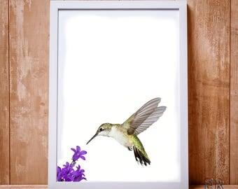 Hummingbird Print, Colibri Print, Hummingbird Art, Hummingbird Wall Art, Bird Wall Prints, Art Printable,  Colibri Poster