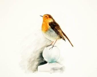 Robin/Bird watercolour painting/A4/8.27x11.69 inches/Giclee print/nursery art/Bird/Home and office decor/Red Robin/European Robin/Bird art