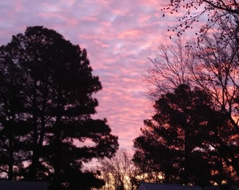 Pink Morning Sunrise