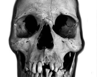 Skull Temporary Tattoo