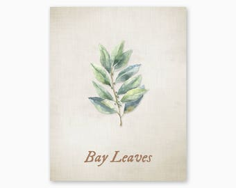 BAY LEAVES Print, Kitchen Herbs Wall Art, Kitchen Herbs Printable, Farmhouse Decor, Kitchen Art, Housewarming Gift, Instant Download