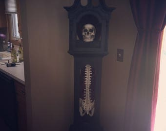 Grandfather clock skull w/ spine