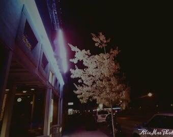 8x10 pink neon light tree photo print