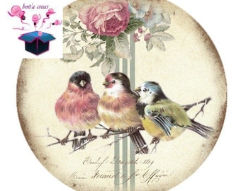 1 cabochon clear domed 14 mm vintage birds theme