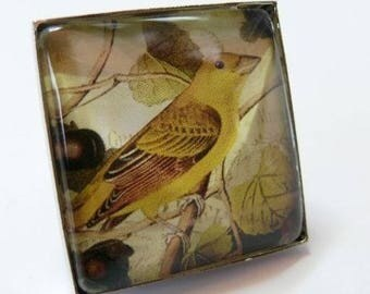 Large Yellow bird 25mm silver square ring