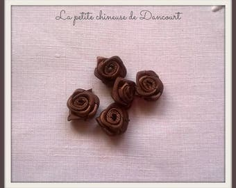 Bag of 10 small roses in cocoa Brown satin