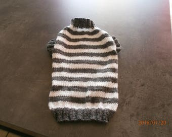 Gray and white striped dog coat