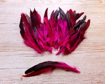 Long feathers fuchsia and black