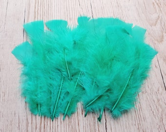 Set of 10 long blue feathers down