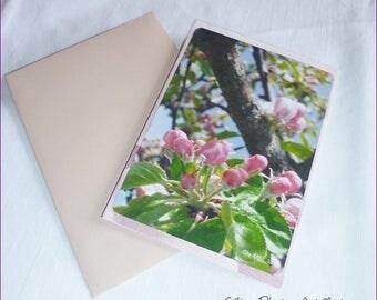 """Carte double faite main """" Bourgeons de fleurs de pommier '10,5x15cm"""