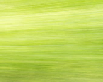 Abstract Green Background, Streaks of Green of the trees and bushes Creating a Beautiful Abstract Background