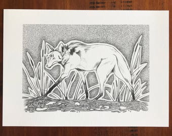 From the River, Maned Wolf Print