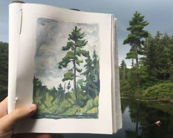 Plein Air Pine landscape painting print
