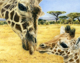 Giraffe print, limited edition, hand signed fine art giclee print - 'A Mother's Love""