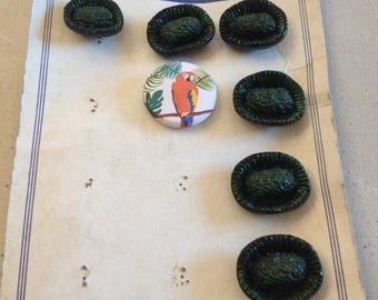 Old plate of 6 green buttons